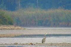 Kuznia w Siodelku - Pazdziernik Lezczok 12