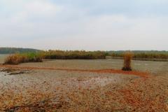 Kuznia w Siodelku - Pazdziernik Lezczok 13