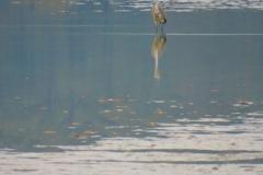 Kuznia w Siodelku - Pazdziernik Lezczok 5