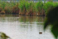 Kuznia w Siodelku - Lezczok Wrzesien 11