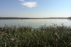 Trasa rowerowa - Palac Tworkow 16