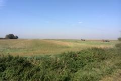 Trasa rowerowa - Palac Tworkow 2