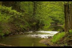 Kuznia-w-siodelku-plenery-Rzeka-Sumina