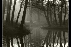 Kuznia-w-siodelku-plenery-Stawy-Szymockie-Cysterskie-Kompozycje-Krajobrazowe-Rud-Wielkich