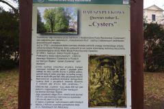 Kuznia-w-siodelku-Park-Cysterski-10