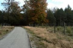 Trasa-rowerowa-Spotkanie-z-drapieznikiem-0