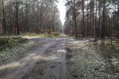 Kuznia w Siodelku - Stanica 6