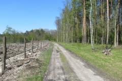 Kuznia W Siodelku - Syfon Klodnicki 8