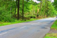 Kuznia W Siodelku - Trasa rowerowa Szlakiem Wichury 10