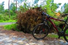 Kuznia W Siodelku - Trasa rowerowa Szlakiem Wichury 9