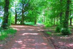 Kuznia w Siodelku - Trasa rowerowa Teznia w Rybniku 7