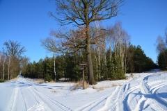 Kuźnia w siodełku zima 2017-22