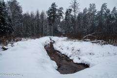 Kuźnia w siodełku zima 2017-43