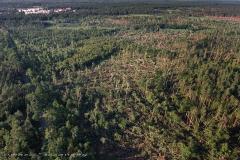 Kuznia W Siodelku - Zniszczony Las
